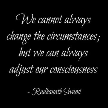 radhanath swami grounding quote